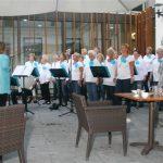 Zonnebloem Breda 5 september 2013 (9)